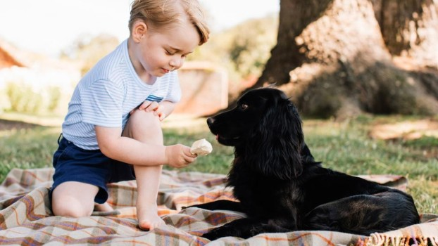 Prințul George a împlinit 4 ani. Un nou portret oficial a fost făcut public