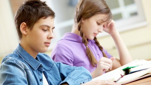 Admiterea la liceu, noi modificări:  Ce importanță vor avea tezele naționale?
