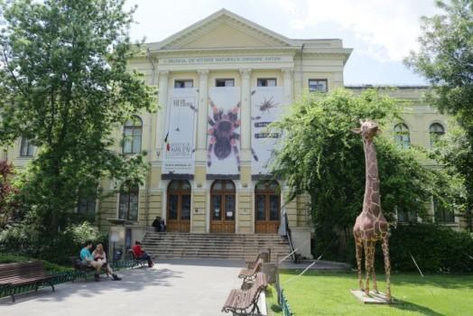 """""""Artizanii naturii"""" cu Dodi și Roni, la Muzeul Antipa"""