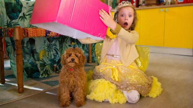 """""""Vafă, câinele minune"""", un nou serial la Minimax"""