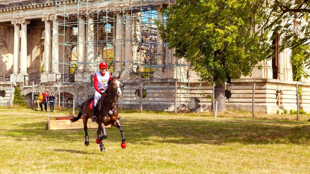 Karpatia Horse Show împlinește 5 ani de când și-a deschis porțile spectatorilor!