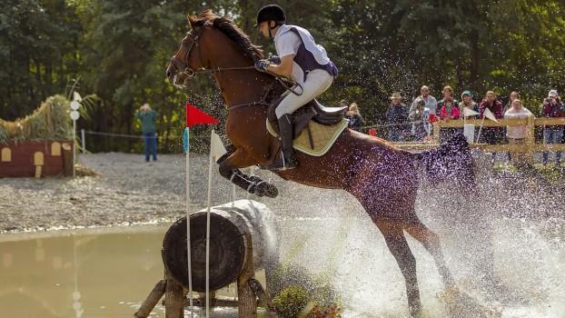 Prichindeii tăi adoră caii? Participă la CONCURS și poți câștiga o invitație la Karpatia Horse Show – Ediția 2018!