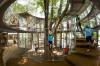 VIDEO Unde se află cea mai căutată grădiniță din lume. Nu are pereți, iar scările au fost înlocuite cu copaci
