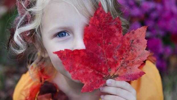 Doza de sănătate: Fructe și legume care cresc imunitatea copiilor toamna