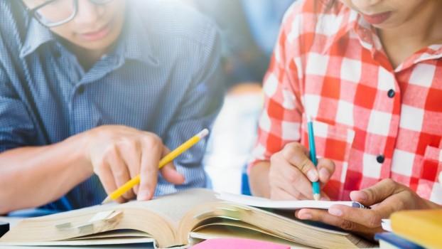 O nouă materie pentru elevii din clasele I – VIII. Proiectul de lege, votat în Parlament