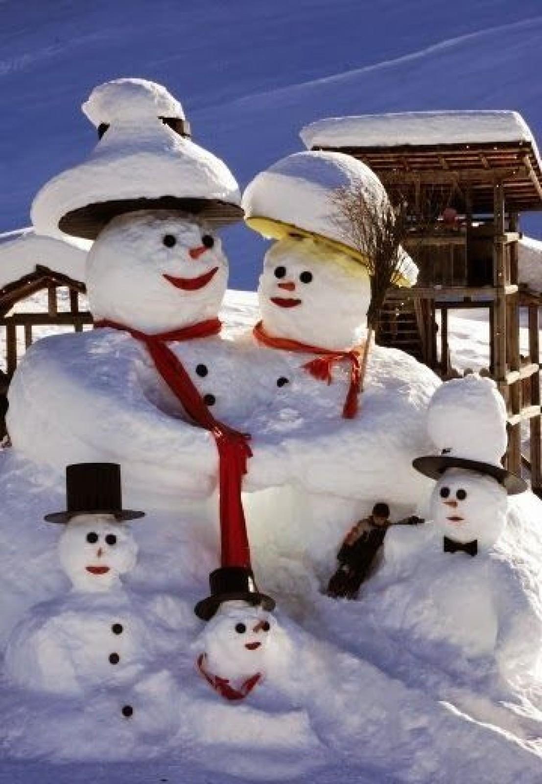 Protejați plantele de zăpadă