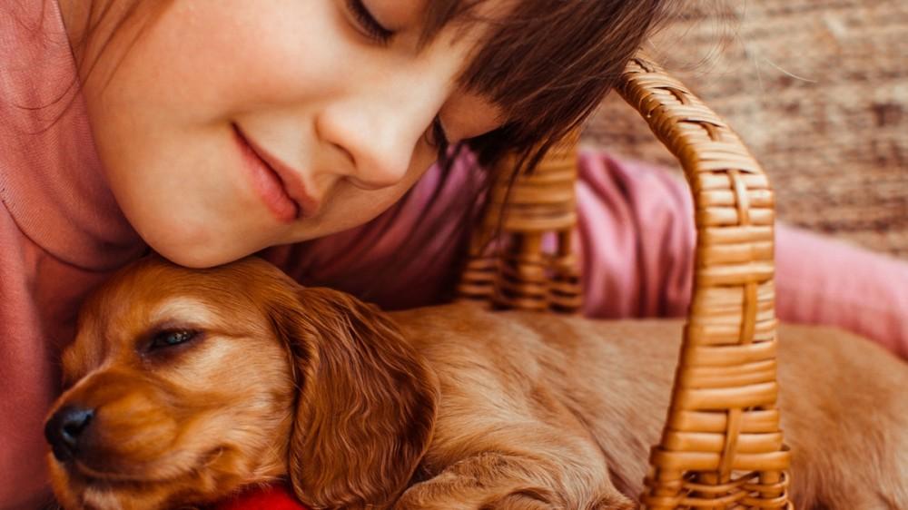 Animal de companie: 5 rase de câini potrivite pentru copii
