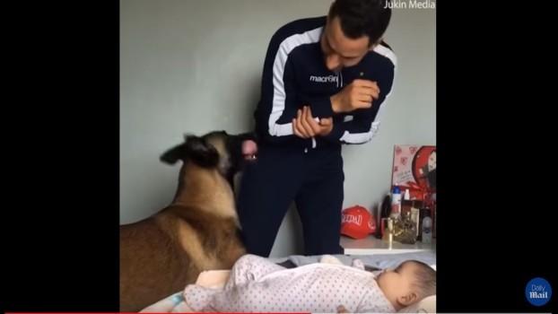 """Reacția unui câine când un tată își """"pedepsește"""" copilul a devenit virală pe Internet VIDEO"""