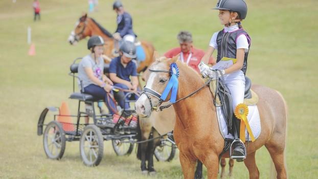8.000 de spectatori și peste 100 de cai și ponei la primul eveniment ecvestru cu desfășurare pe 2 arene de spectacole